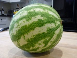 Watermelon from Big Oak Natural Farm