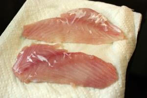 Fresh triggerfish