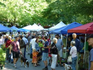 Wow, busy! The N. Asheville Tailgate Market at UNCA