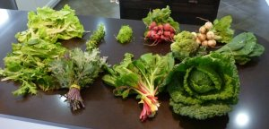 An example of the contents of our weekly CSA box from Poplar Ridge Farm last year