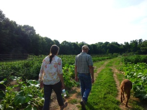 Walking through the organically grown tilled garden.